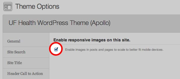 Enable/Disable responsive Images Admin Panel Option