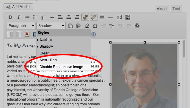 Adding a class to disable responsive on images in WYSIWYG editor